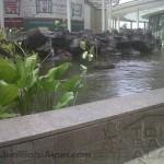 kolam ikan batu alam